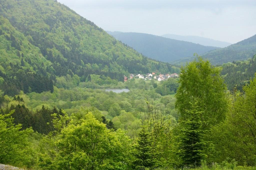Les Vosges du Sud