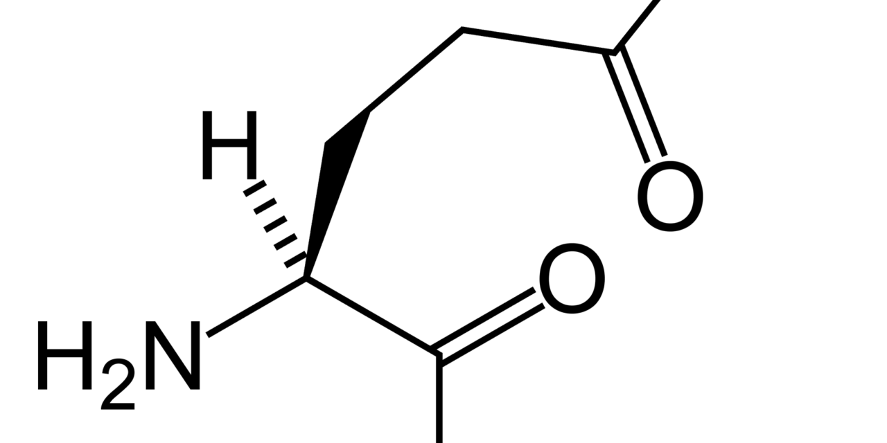 Les dangers de la L-glutamine